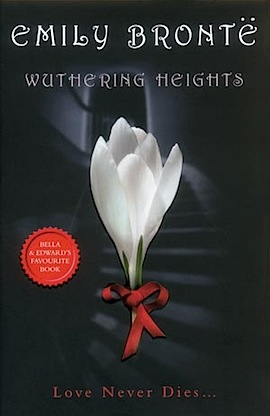 wuthering heights and twilight essay Need your students to connect outward from wuthering heights to other readings essay questions challenges connections between her twilight novels and.